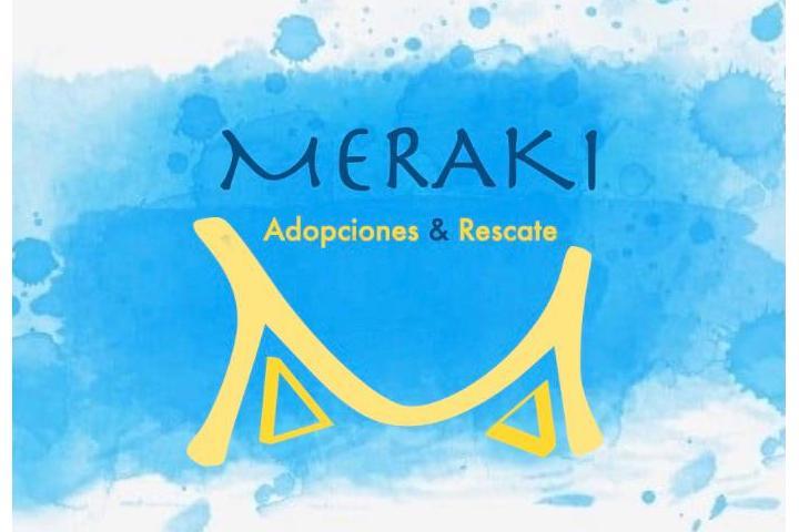 MERAKI Adopciones & Rescates
