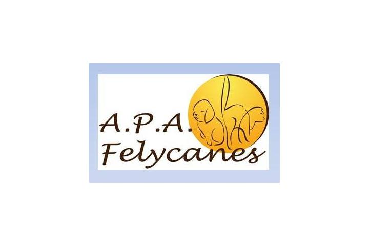APA FELYCANES