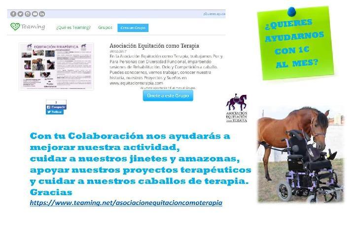 Asociación Equitación como Terapia