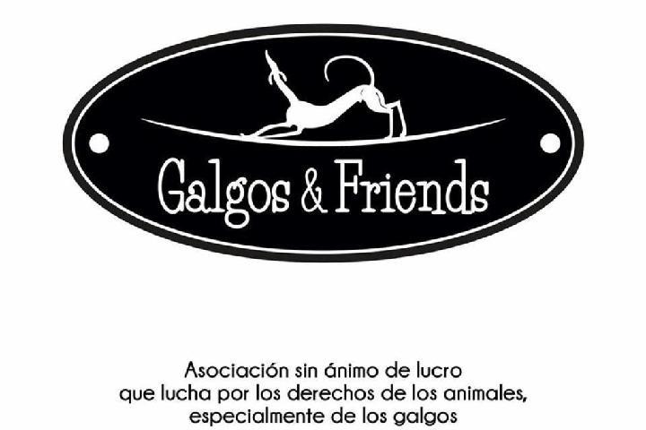 Galgos & Friends