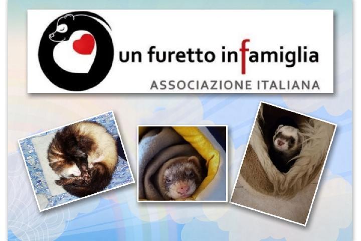 Associazione Un Furetto in Famiglia