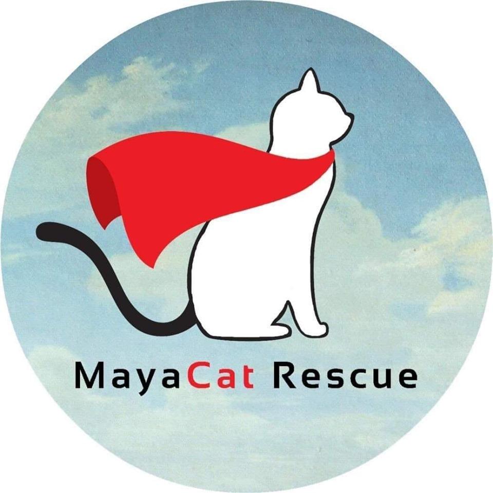 MayaCat Rescue-Every life is worth saving
