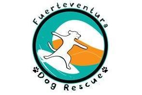 FUERTEVENTURA DOG RESCUE 2013