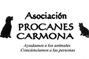 Procanes Carmona