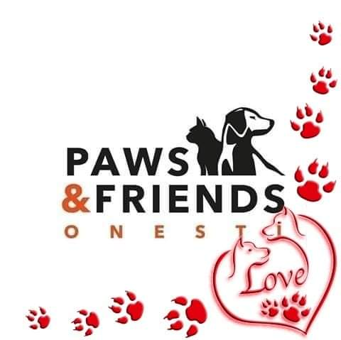 Paws and Friends Onesri