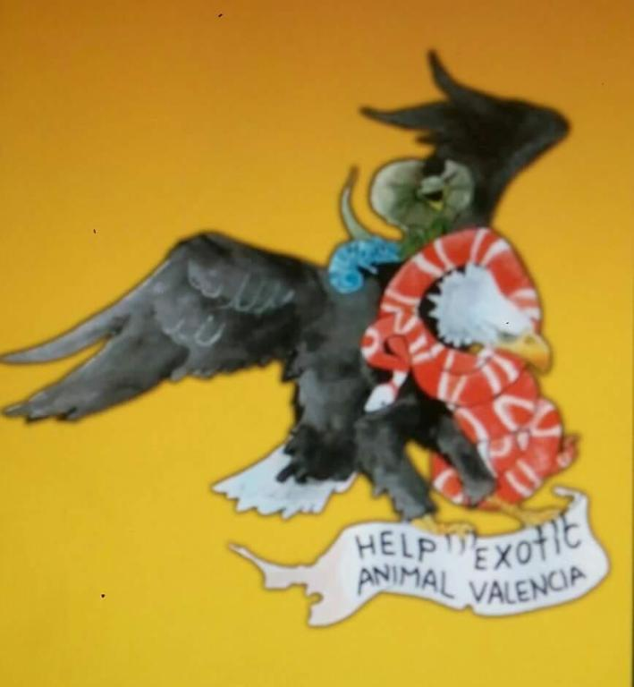 Ayuda a Help Exotics Animals Valencia