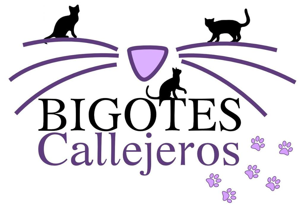 Bigotes Callejeros