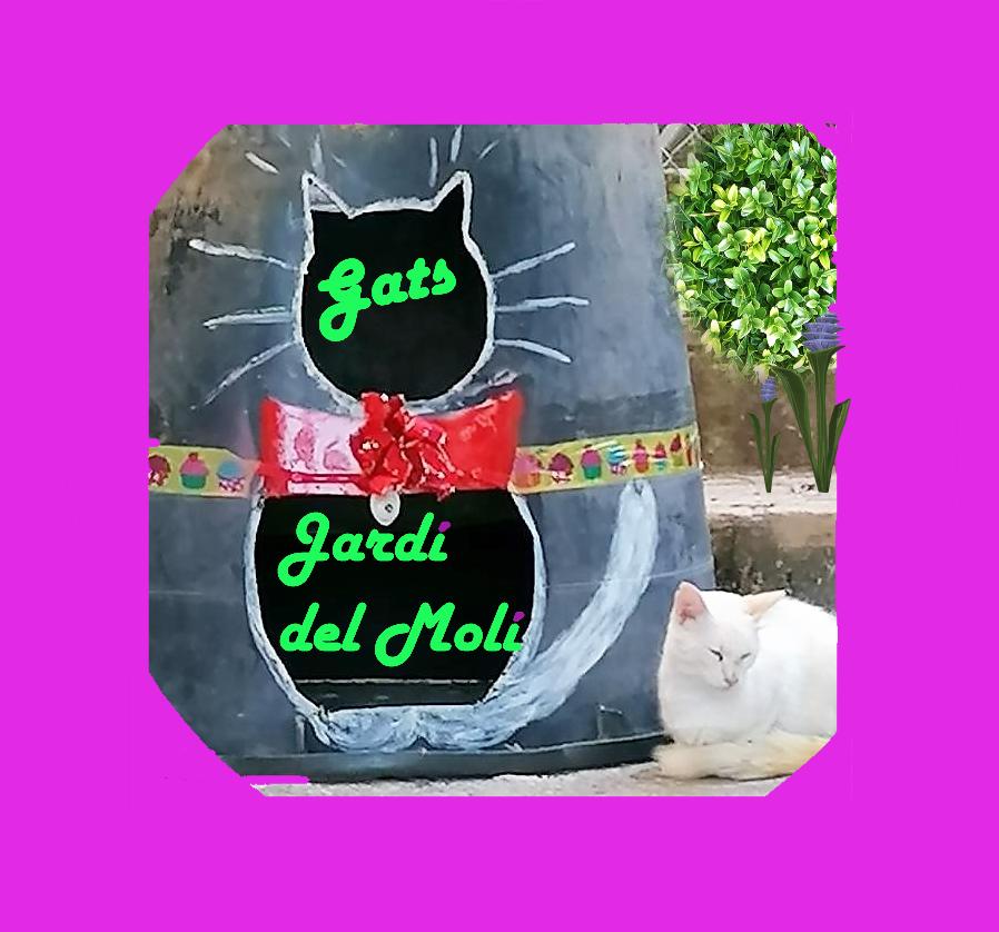 GATS JARDÍ DEL MOLÍ