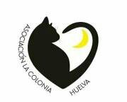 Asociación la Colonia Huelva. Gatos de perrera.