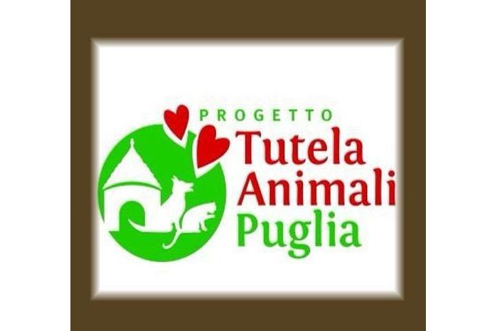 Freunde Tierschutz Canidiso Zingarelli