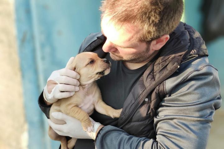 ADAYRA Adopciones - contra el maltrato y abandono animal