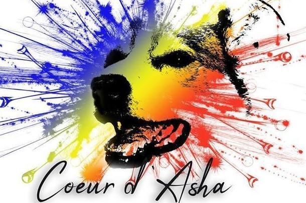 CŒUR D'ASHA