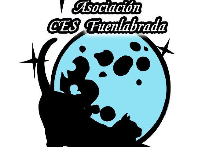 Asociación CES Fuenlabrada