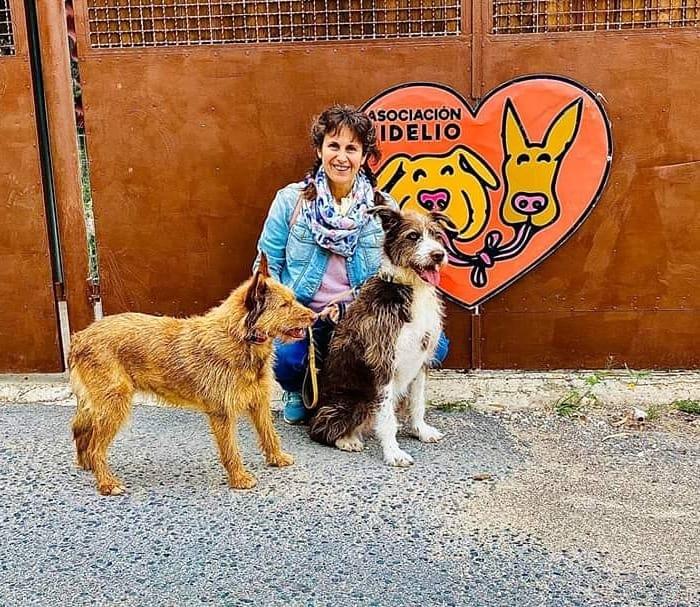 Fidelio Benalmádena Rescue Shelter