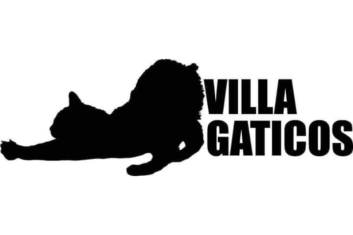 Villagaticos Zaragoza