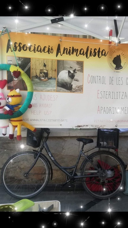 BICICLETA PARA ALIMENTADORA DE GATOS