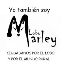 LOBO MARLEY