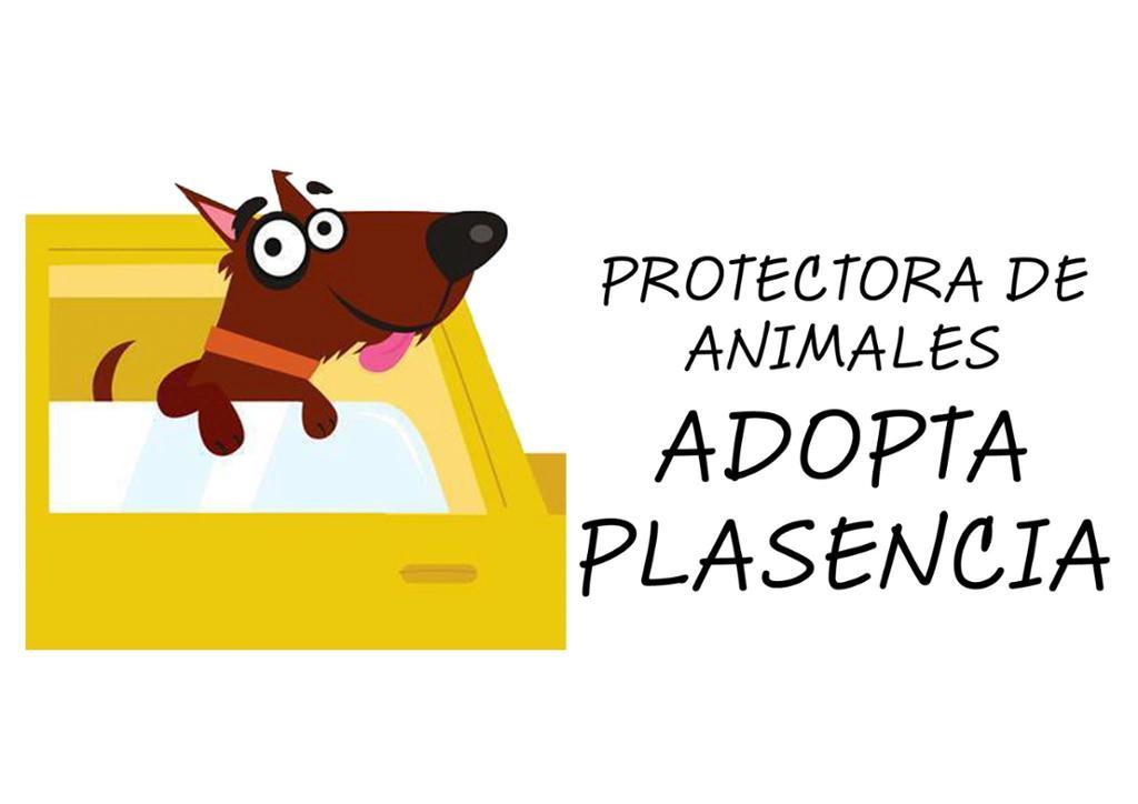 Protectora de Animales ADOPTA PLASENCIA