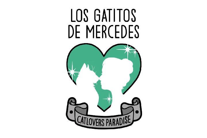 Asociación CatLoversParadise - Los gatitos de Mercedes