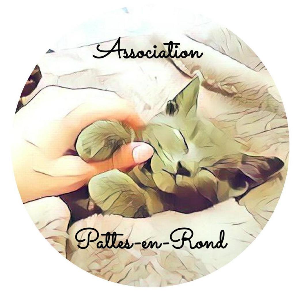 Association Pattes-en-Rond