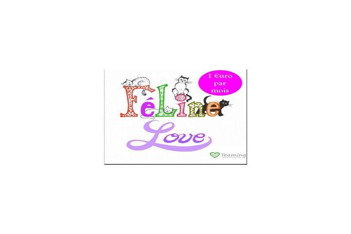 Féline Love Association