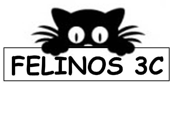 Protectora Felina de Tres Cantos (felinos3c)