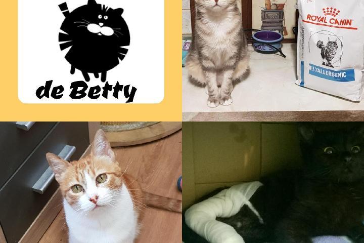 El Hogar de Betty. Enfermos crónicos, positivos y yayos.