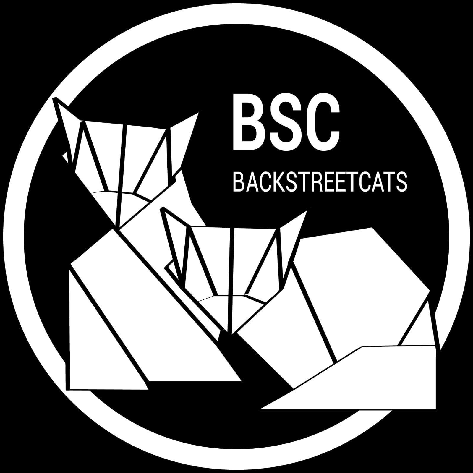 BackStreet Cats