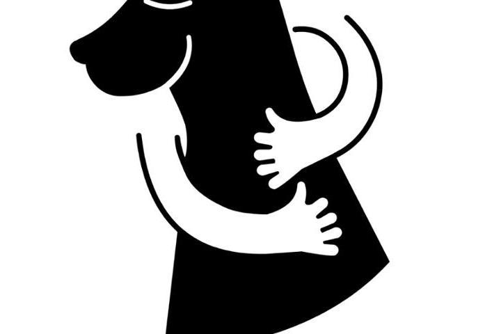 El Perro Callejero ONG
