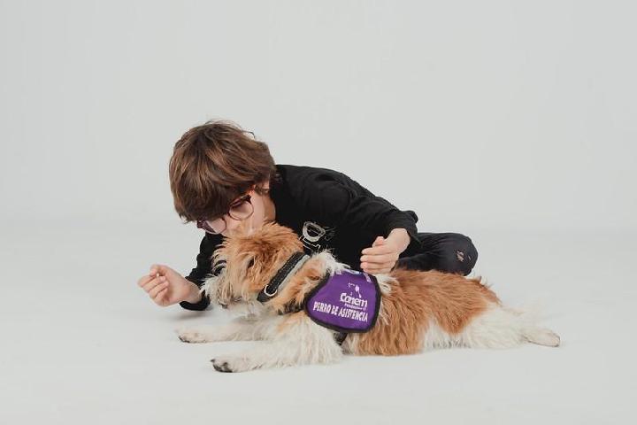 Fundación CANEM Perros de Alerta Médica