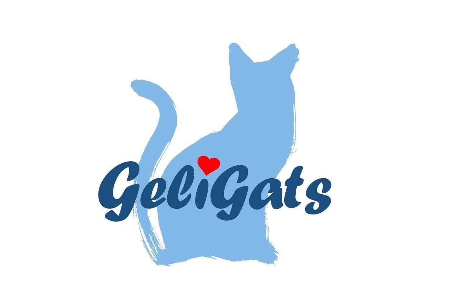 Geligats-Ajudem els gats sense sostre