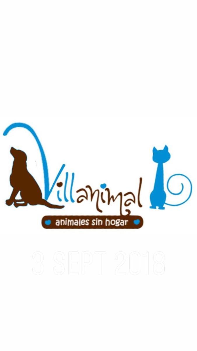 Asociacion Villanimal. Animales sin hogar