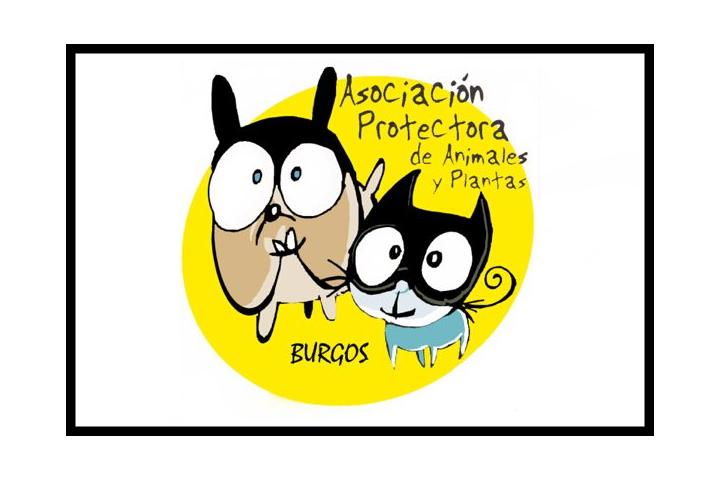 ASOCIACION PROTECTORA ANIMALES Y PLANTAS DE BURGOS