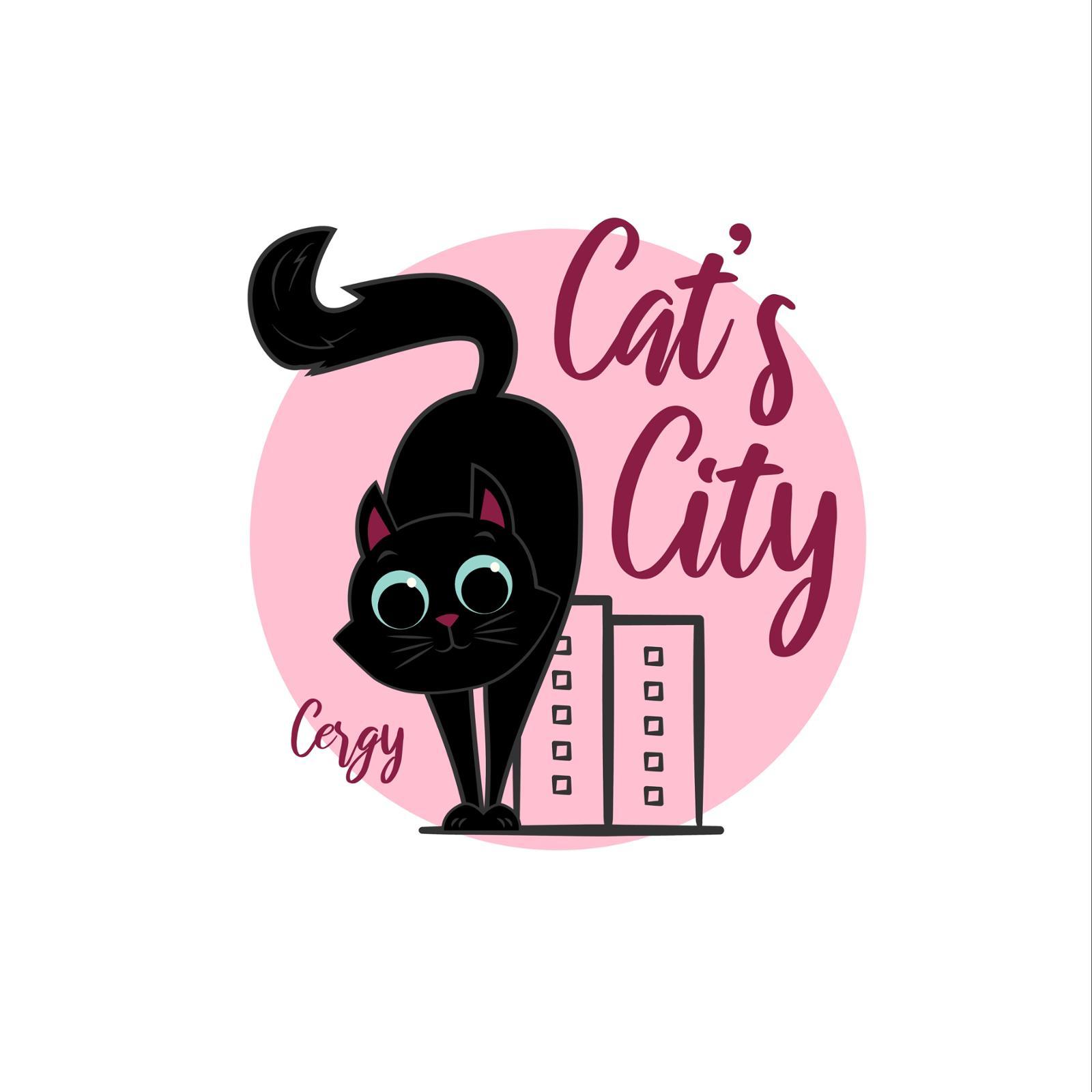 Cats'city - l'école du chat de cergy