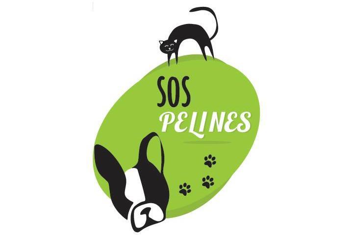 SOS PELINES PROTECTORA (Raquel animalista)