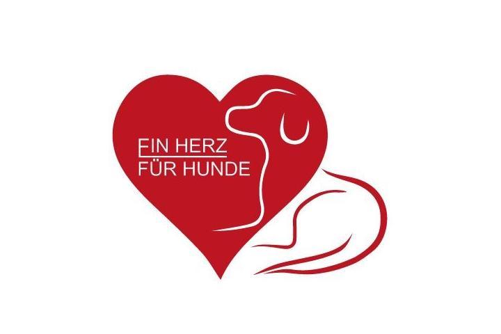 ein Herz für Hunde - Die Mülldeponie in Bihac