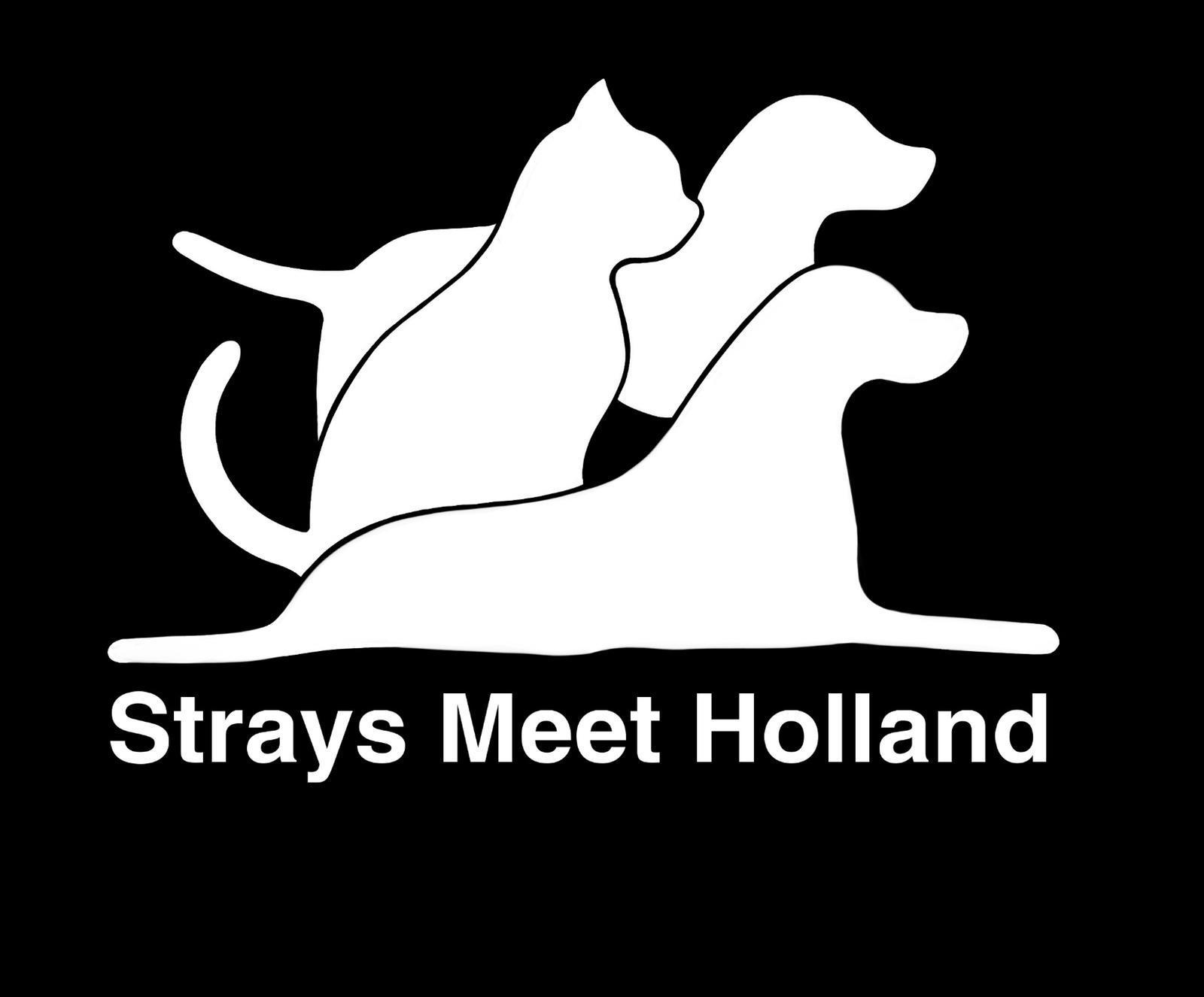 Stichting Strays Meet Holland