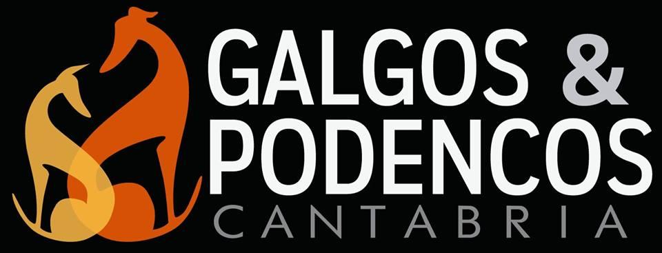 Galgos & Podencos Cantabria