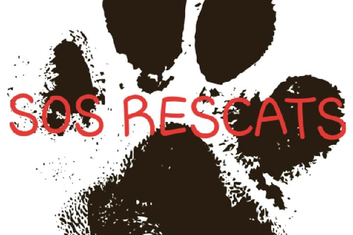 SOS Rescats
