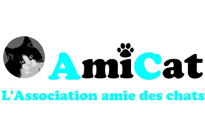 Asociación AmiCat