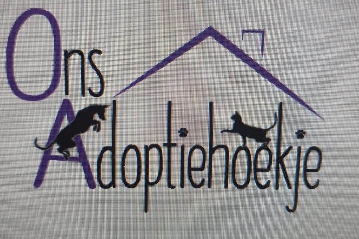 Ons adoptiehoekje