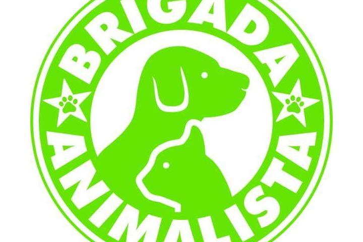 Brigada Animalista Rescate Animal