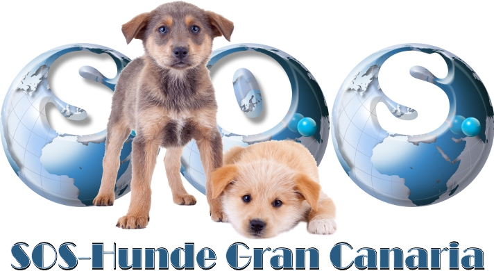 SOS-Hunde Gran Canaria