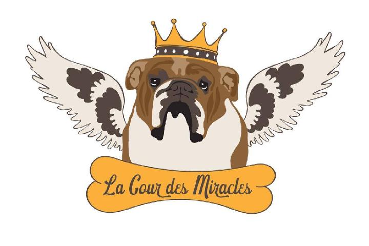 The Animal Wellness Association