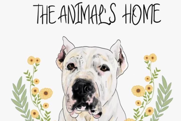 The Animal's Home