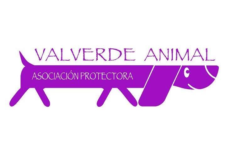 PROTECTORA VALVERDE ANIMAL