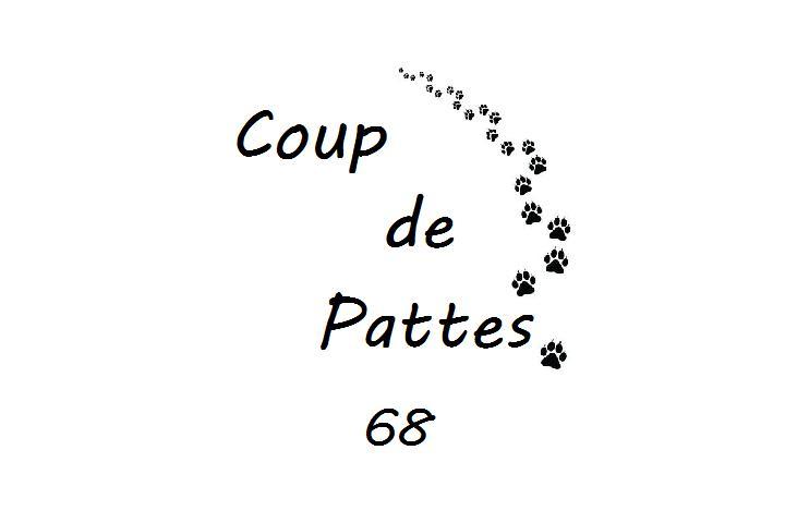 Coup de Pattes - 68