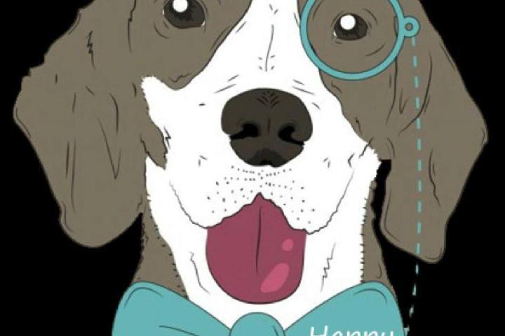 Refugio Happy Dog Toledo
