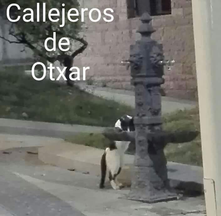 Callejeros de Otxar -Otxarko kale zaleak