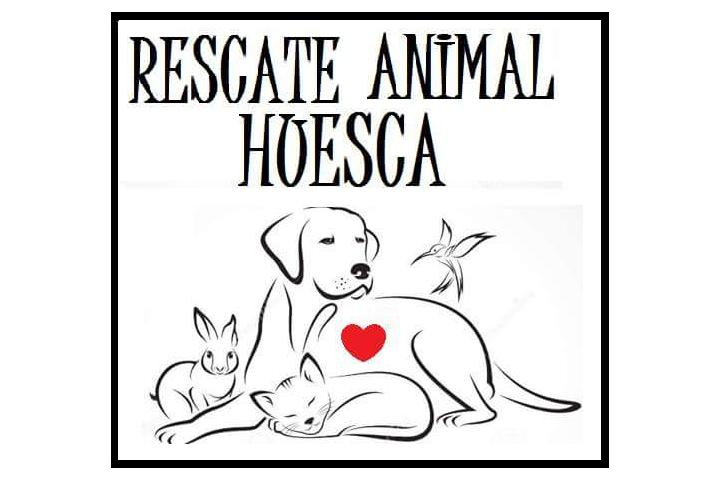 RESCATE ANIMAL HUESCA